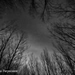 08/03/2011 – La leyenda de la Encantada (y III): hipótesis sobre su origen