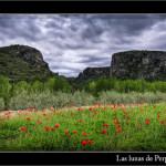 20/05/2011 – Primavera en el barranc de l'Encantà (time-lapse)