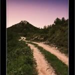 01/06/2011 – Foto-blog (003): Camino de silencio
