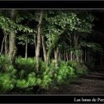 24/08/2011 – Foto-blog (023): Al final del camino
