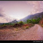 05/10/2011 – Foto-blog (036): Camino del atardecer