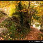 08/11/2011 – Foto-blog (048): Retazos de otoño (II)