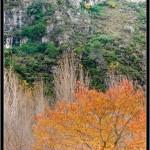 05/12/2011 – Foto-blog (066): Retazos de otoño (VII)