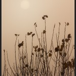 06/01/2012 – Foto-blog (086): Boira (VI)