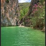 19/01/2012 – Foto-blog (093): En el estanque de las ninfas