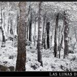 17/02/2012 – Foto-blog (111): Retazos de invierno (III)