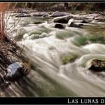 20/02/2012 – Foto-blog (112): Fluir y cantar (III)