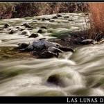 19/04/2012 – Foto-blog (148): Fluir y cantar (IV)