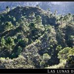 14/05/2012 – Foto-blog (163): De Perputxent a La Safor