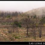 31/10/2012 – Foto-blog (216): Boira (VII)