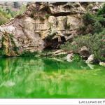 26/08/2013 – Foto-blog (306): Verde estío