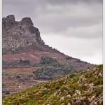 20/12/2013 – Foto-blog (319): Las dos torres