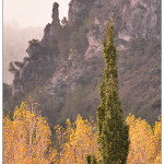 21/01/2016 – Foto-blog (403): De fusta i pedra