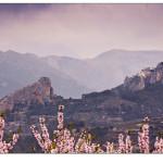 07/03/2016 – Foto-blog (419): Wàdï Last, castells de roca