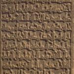 24/04/2016 – La llegenda d'Amira: primers passos d'un llarg camí